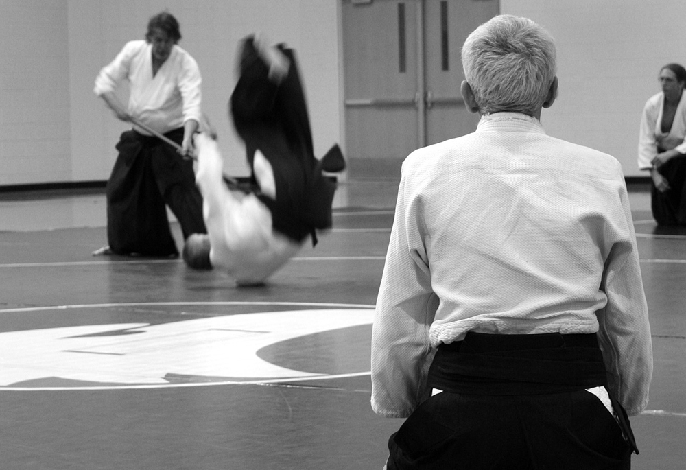 Black Belt Program Aikido Template 01 Martial Arts Websites